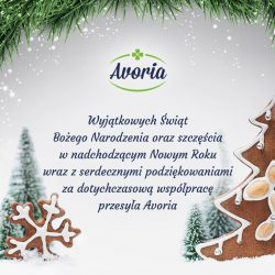 Frohe Festtage! 🎄💚