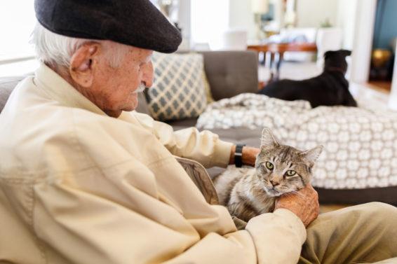 Zwierzęta i osoby starsze