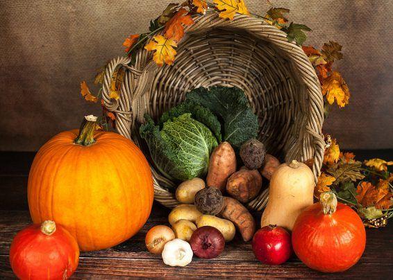 Jak przygotować Seniora do okresu jesienno-zimowego?