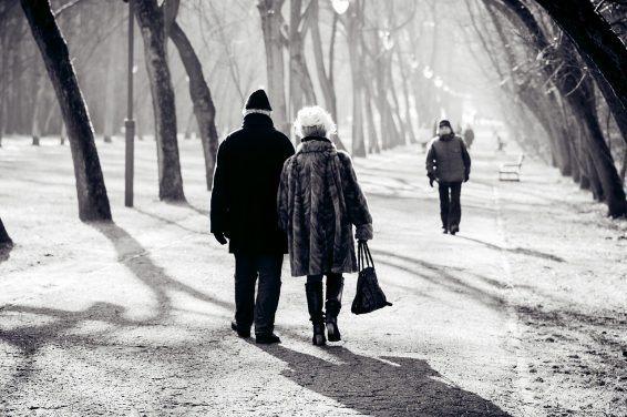 Senior zimą blog Avoria